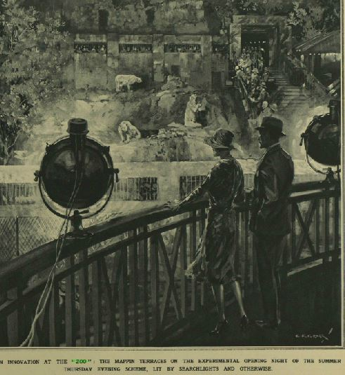 Evening opening at the Zoo Illustrated London News June 1930
